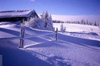 Zima w środku lata