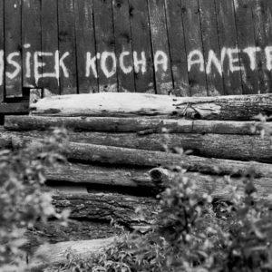 Napis na płocie by Wojtek